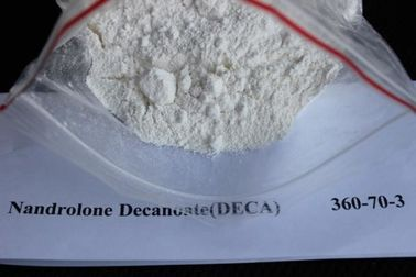 Chiny Nandrolon Decanoate (DECA) CAS: 360-70-3 surowy hormon steroidowy fabryka